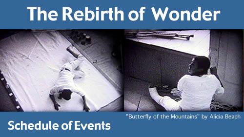 20030215_The-Rebirth-of-Wonder_01
