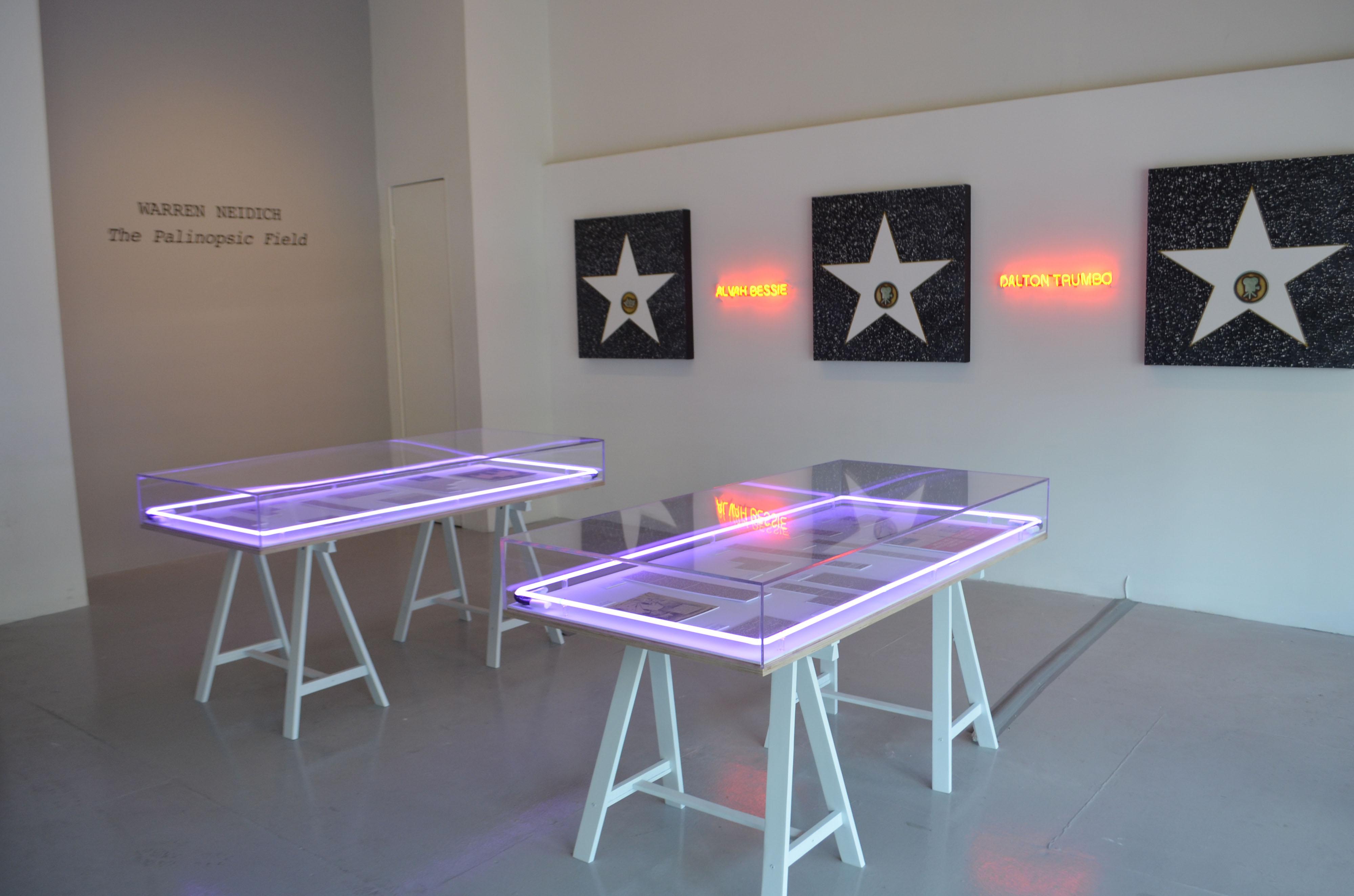 Warren Neidich installation