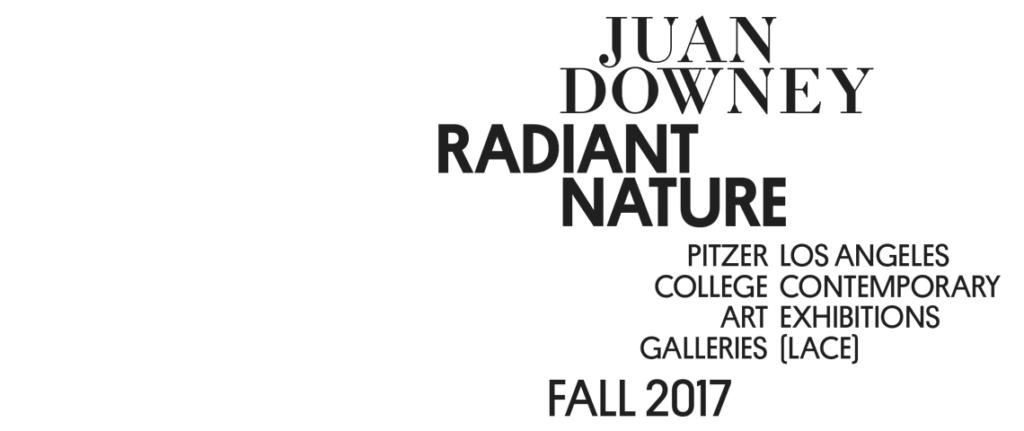 Juan Downey Fall 2017