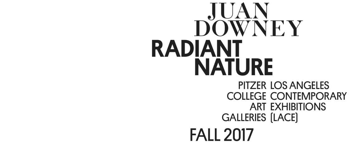 Juan Downey: Radiant Nature