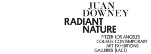 Juan Downey: Radiant Nature Book Launch
